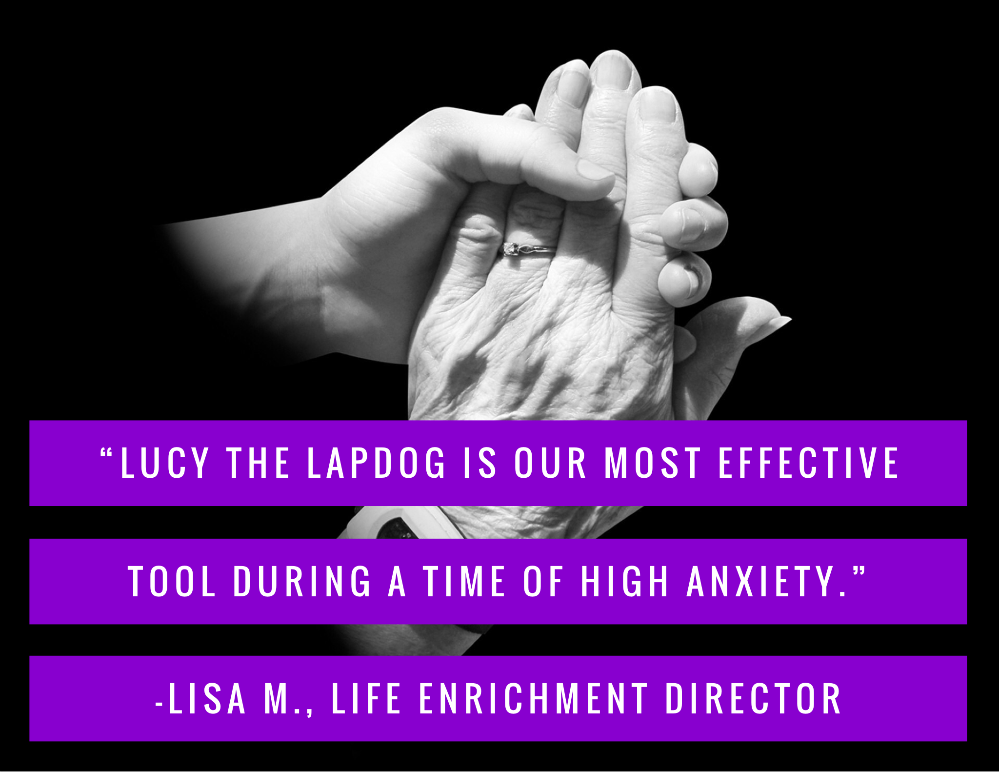 Quote: Lucy the lapdog is the most effective tool